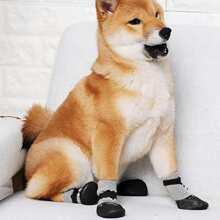 4pcs Dog Cartoon Sock