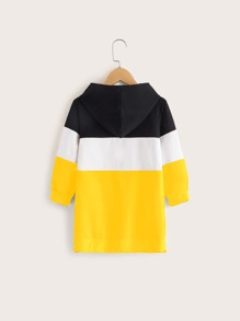 Toddler Girls Letter Graphic Contrast Panel Hoodie Dress