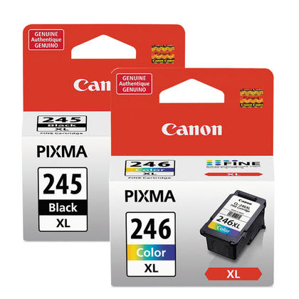 Canon PIXMA MG2520 Original Ink Cartridges Black & Colour Combo, 2 pack - High Yield