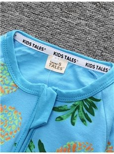 Pineapple Long Sleeve Covered Feet Cotton Zipper Infant Jumpsuit/Bodysuit