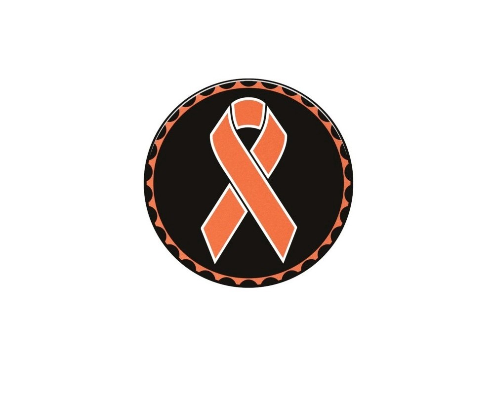 Tufskinz JEX059-GTO-416-G Rated Badge Fits Jeep 1 Piece Kit In Brushed Silver(Kidney Cancer Ribbon)