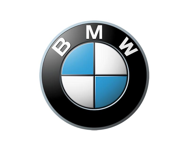 Genuine BMW 51-13-8-125-349 Door Molding BMW Front Left