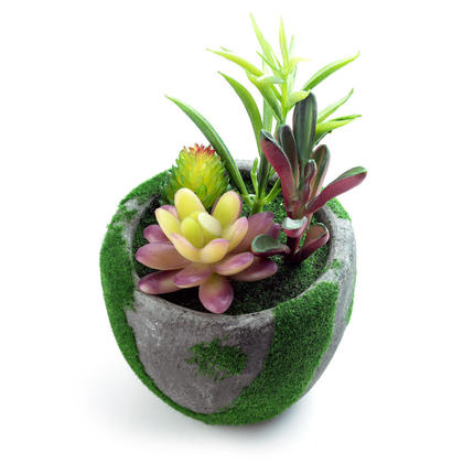 Birthday Sale Decorative Plastic Artificial Succulent Greenery Bonsai Plants, 10.5*10.5*20.5 cm - LIVINGbasics™