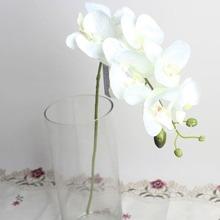 1 rama phalaenopsis artificial