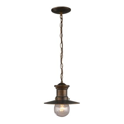42007/1 1 Light Outdoor Pendant in Hazlenut Bronze and Clear Seeded
