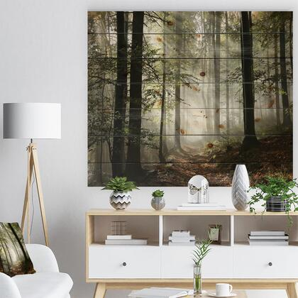 WD9835-46-36 Light In Dense Fall Forest With Fog - Landscape Print On Natural Pine Wood -
